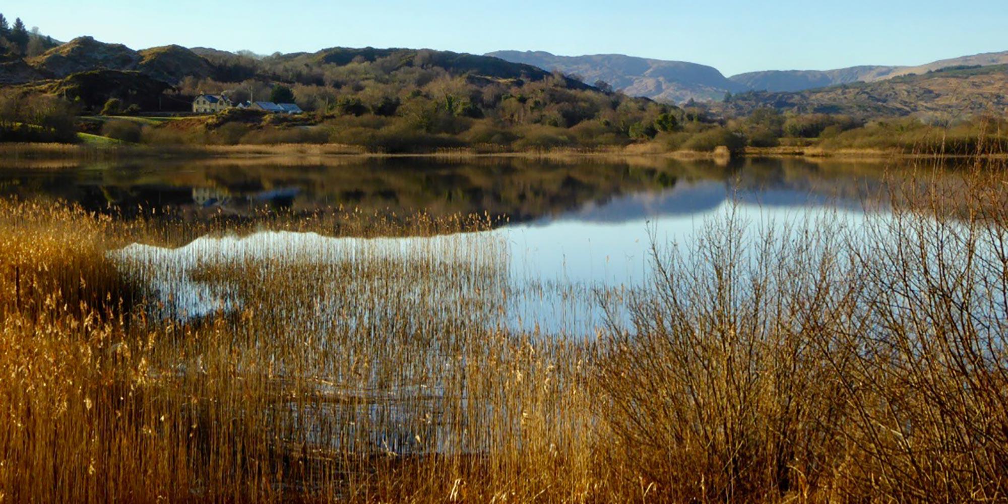 River Lee near Ballingeary